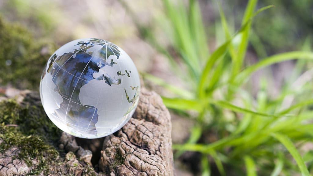 nachhaltiger Firmenumzug